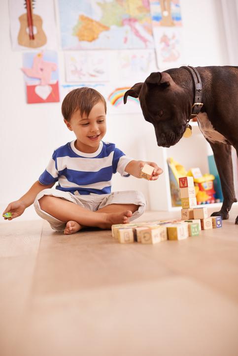 Hundesikre  barneleker